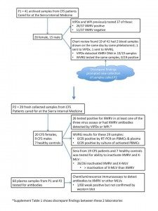Knox-study-diagram-225x300